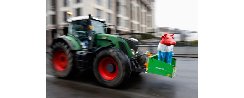 Россия может запретить вывоз за границу кожевенного сырья. Оно нам сейчас самим нужно